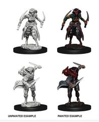 Nolzur's Marvelous Miniatures - Tiefling Female Rogue