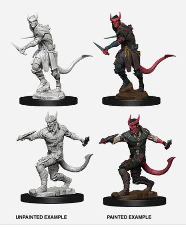 Nolzurs Marvelous Miniatures - Tiefling Male Rogue