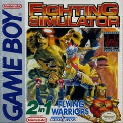2 In 1: Flying Warriors / Fighting Simulator