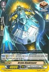 Orchis Blaukreuzer - G-EB03/056EN - C