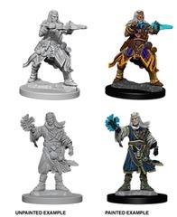 Pathfinder Battles Unpainted Minis - Male Human Wizard