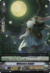 Whiteness Rabbit - V-BT01/057EN - C