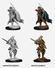 Nolzur's Marvelous Miniatures - Male Elf Rogue