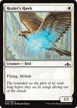 Healers Hawk - Foil
