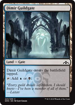 Dimir Guildgate (245)