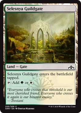 Selesnya Guildgate (255) - Foil