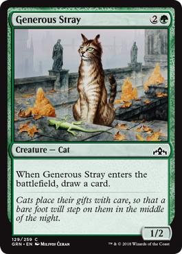 Generous Stray - Foil