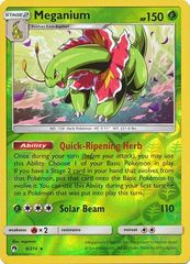 Meganium - 8/214 - Reverse Holo on Channel Fireball
