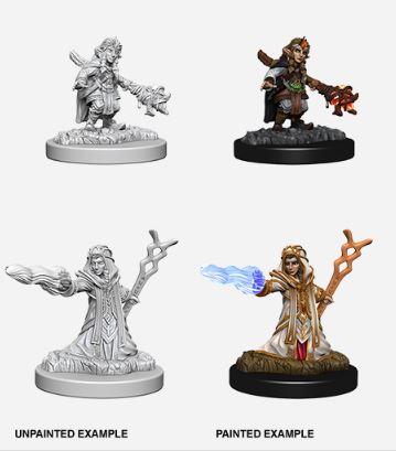Nolzurs Marvelous Miniatures - Female Gnome Wizard