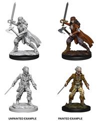 Nolzur's Marvelous Miniatures - Vampire Hunters