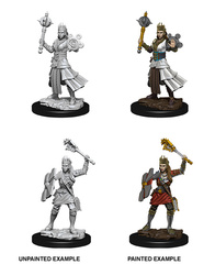 Nolzur's Marvelous Unpainted Miniatures - Female Human Cleric