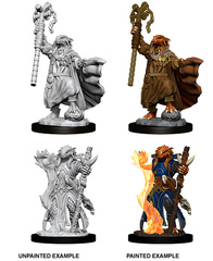 Nolzur's Marvelous Miniatures - Female Dragonborn Sorcerer