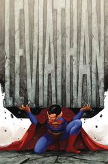 Action Comics #1011 (STL117477)