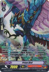 Prism Bird - G-RC02/064EN - R