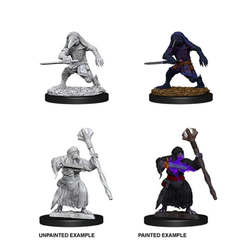 Nolzur's Marvelous Miniatures - Kenku Adventures
