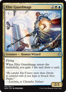 Elite Guardmage - Foil