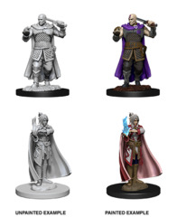 Nolzurs Marvelous Miniatures - Human Ranger and Moon Elf