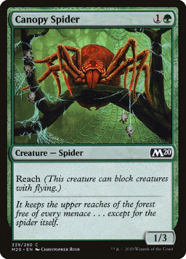 Canopy Spider - Welcome Deck Exclusive