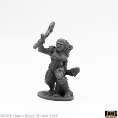 Jade Fire Warrior