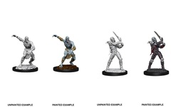Nolzur's Marvelous Miniatures - Wight & Ghast