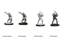 Nolzur's Marvelous Miniatures - Wight & Ghast