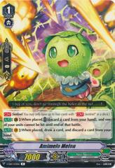 Amimelo Melon - V-EB10/033EN - R