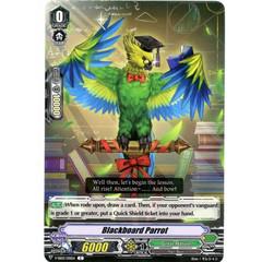 Blackboard Parrot - V-SS03/130EN - C