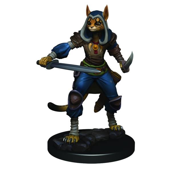 Female Tabaxi Rogue
