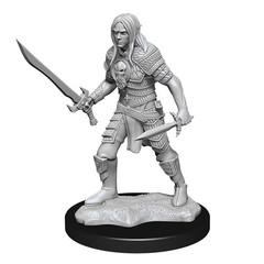 Pathfinder Deep Cuts: Elf Fighter Male