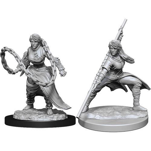 D&D Nolzurs Marvelous Unpainted Miniatures: W14 Female Human Monk