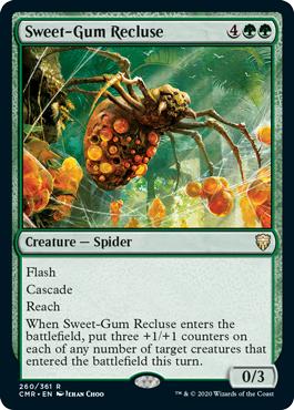 Sweet-Gum Recluse