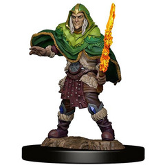 D&D Premium Painted Figure: W5 Male Elf Fighter