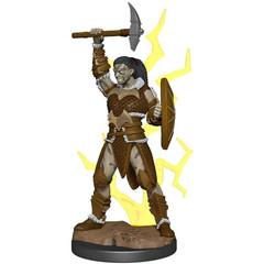 D&D Premium Painted Figure: W5 Goliath Barbarian