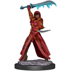 D&D Premium Painted Figure: W5 Female Human Rogue