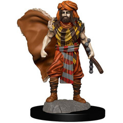 D&D Premium Painted Figure: W4 Male Human Druid