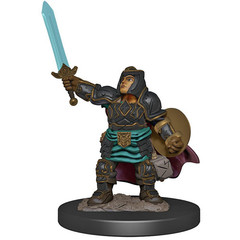 D&D Premium Painted Figure: W4 Female Dwarf Paladin