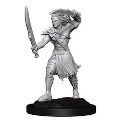 Magic: The Gathering Unpainted Miniatures: Vampire Lacerator & Vampire Hexmage