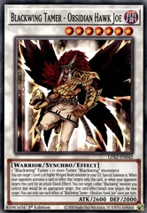 Blackwing Tamer - Obsidian Hawk Joe - LDS2-EN042 - Common - 1st Edition