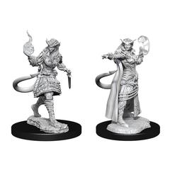 D&D Nolzur's Marvelous Miniatures: Tiefling Sorcerer Female (Wave 15)