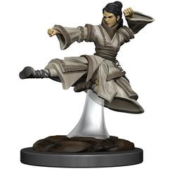 D&D Premium Painted Figure: W6 Human Monk Female
