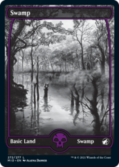 Swamp (272)