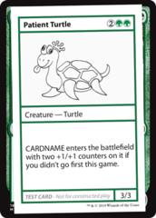 Patient Turtle (No PW Symbol)