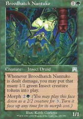 Broodhatch Nantuko - Foil