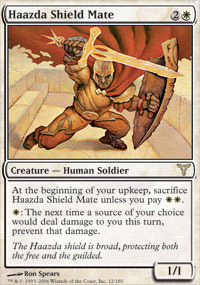 Haazda Shield Mate - Foil