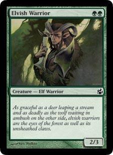 Elvish Warrior - Foil