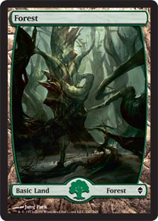 Forest - Full Art (247) - Zendikar Foil