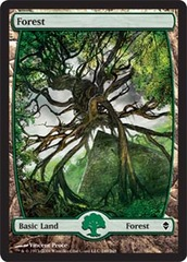 Forest (249) - Full Art - Foil
