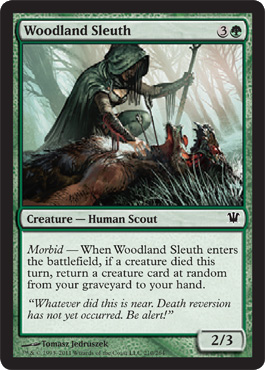 Woodland Sleuth - Foil