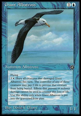 Giant Albatross (2)
