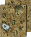 Pathfinder Flip-Mat Classic: Desert
